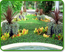 Orlando Commercial Landscaping Services