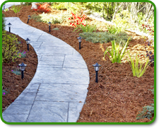 Orlando Landscaping Mulching & Plant Installers